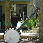 Is the Standard Banjo Better?